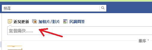 facebook 的狀態列輸入提示...「寫個痛快」